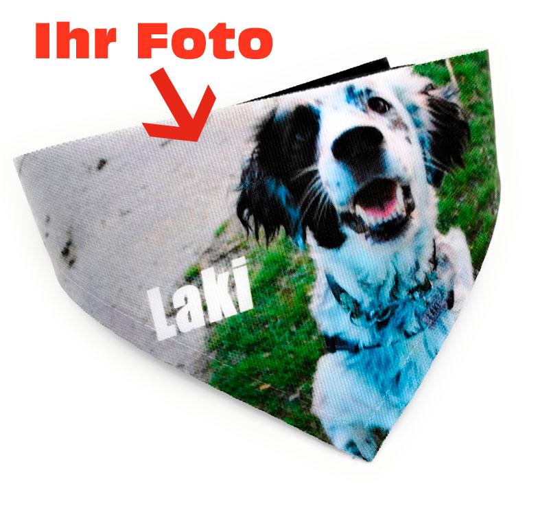 hundehalstuch-druckwunder-mitfoto-fotodruck-textildruck-hundeaccessoires-hochdorf